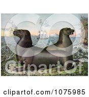 Two Sea Lions With Ships In The Distance Royalty Free Historical Clip Art by JVPD