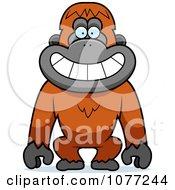 Smiling Orangutan Monkey