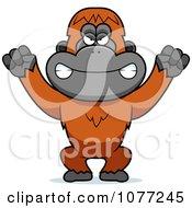 Mad Orangutan Monkey