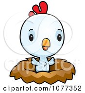 Clipart Cute Baby White Rooster Chick In A Nest Royalty Free Vector Illustration