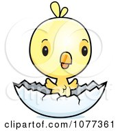 Clipart Cute Baby Yellow Chick Hatching Royalty Free Vector Illustration