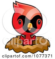 Clipart Cute Red Baby Cardinal Chick In A Nest Royalty Free Vector Illustration