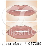 Clipart Before And After Lip Filler Scenes Royalty Free Vector Illustration