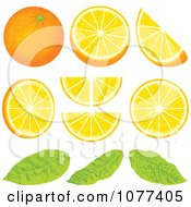 Orange Wedge Fruit Design Elements