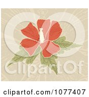 Clipart Red Hibiscus Flower Over Tan Royalty Free Vector Illustration