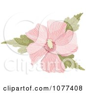 Clipart Pink Hibiscus Flower Royalty Free Vector Illustration by Any Vector