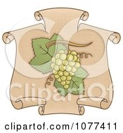 Clipart Green Grapes On A Scroll Royalty Free Vector Illustration