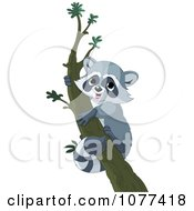 Clipart Cute Raccoon Climbing A Tree Royalty Free Vector Illustration by Pushkin
