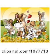 Rabbit Family In A Meadow With Yellow Flowers