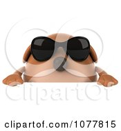 Clipart 3d Chubby Brown Dog Wearing Shades And Holding A Sign 3 Royalty Free CGI Illustration