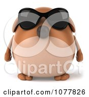 Clipart 3d Chubby Brown Dog Wearing Sunglasses And Facing Front Royalty Free CGI Illustration