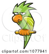 Clipart Perched Green Parrot Royalty Free Vector Illustration