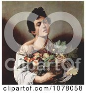 Young Man Holding A Basket Of Fruit Royalty Free Historical Clip Art