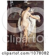 Carlotta Chabert As Venus Standing Nude In A Garden With Doves By Francesco Hayez