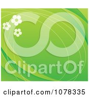 Floral Background Of Daisies On Green With Copyspace