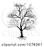 Clipart Silhouetted Mature Bare Tree And Roots Royalty Free Vector Illustration by AtStockIllustration