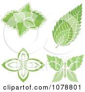 Mint Leaf Designs