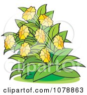 Clipart Bush With Yellow Flowers 1 Royalty Free Vector Illustration
