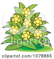 Clipart Bush With Yellow Flowers 2 Royalty Free Vector Illustration