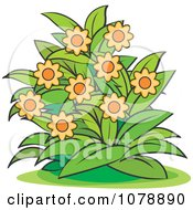Clipart Bush With Orange Flowers Royalty Free Vector Illustration