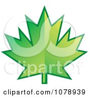 Clipart Green Maple Leaf Logo Royalty Free Vector Illustration by Lal Perera