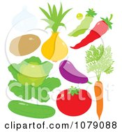Clipart Garlic Potato Onion Pea Chili Pepper Lettuce Eggplant Tomato Carrot And Cucumber Royalty Free Vector Illustration