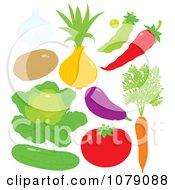 Garlic Potato Onion Pea Chili Pepper Lettuce Eggplant Tomato Carrot And Cucumber