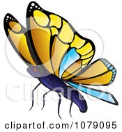 Clipart Yellow And Blue Butterfly Royalty Free Vector Illustration