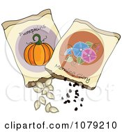 Clipart Packets Of Morning Glory And Pumpkin Seeds Royalty Free Vector Illustration