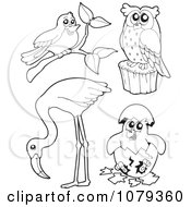 Clipart Outlined Birds Royalty Free Vector Illustration by visekart