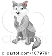 Clipart Handsome Gray Wolf Sitting Royalty Free Vector Illustration by Pushkin