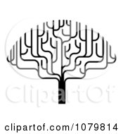 Clipart Stylized Black And White Bare Tree Royalty Free Vector Illustration by AtStockIllustration