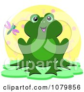 Dragonfly And Happy Frog