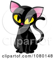 Sitting Black Cat With Yellow Eyes