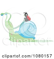 Clipart Ladybug Riding A Snail And Holding The Reins Royalty Free Vector Illustration