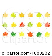 Clipart Orange Green Red And Yellow Autumn Maple Leaves Royalty Free Vector Illustration by vectorace