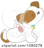 Clipart Itchy Puppy Scratching Behind His Ear Royalty Free Vector Illustration