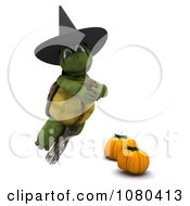 3d Tortoise Halloween Witch Flying On A Broomstick