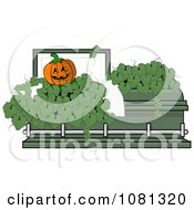 Jackolantern And Leaves In A Green Coffin