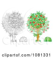Clipart Set Of Outlind And Colored Apple Trees And Bushes Royalty Free Illustration
