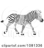 Clipart Walking Zebra Royalty Free Vector Illustration by Alex Bannykh