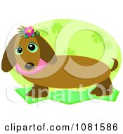 Clipart Cute Dachshund Dog With A Green Floral Oval Royalty Free Vector Illustration