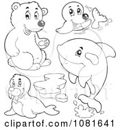 Clipart Outlined Bear Seal Walrus And Whale Royalty Free Vector Illustration by visekart