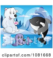 Clipart Polar Bear Watching A Seal And Orca Royalty Free Vector Illustration by visekart