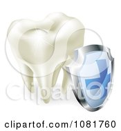 3d Sparkling Tooth And Shield