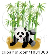 Cute Playful Panda With Bamboo
