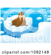 Clipart Arctic Walrus On Coastal Ice Royalty Free Illustration by Alex Bannykh