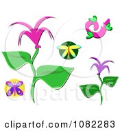 Butterflies And Tropical Flowers