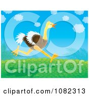 Clipart Ostrich Running On A Grassy Hill Royalty Free Illustration by Alex Bannykh