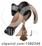 Clipart 3d Pookie Wiener Dog Wearing Shades And Holding A Sign 2 Royalty Free CGI Illustration